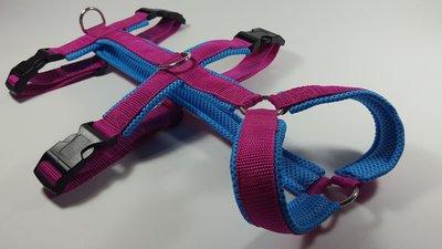 Anti escape harness size XS (41-50cm)