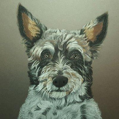 Pastel portret van jouw huisdier 20 x 30cm